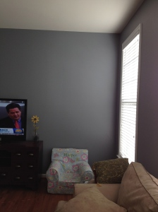 Family room. Sherwin Williams Steely Gray. Photo two. See how the color changes with the light?