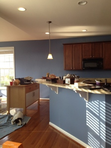 Kitchen and sunroom: Sherwin Williams Sporty Blue.